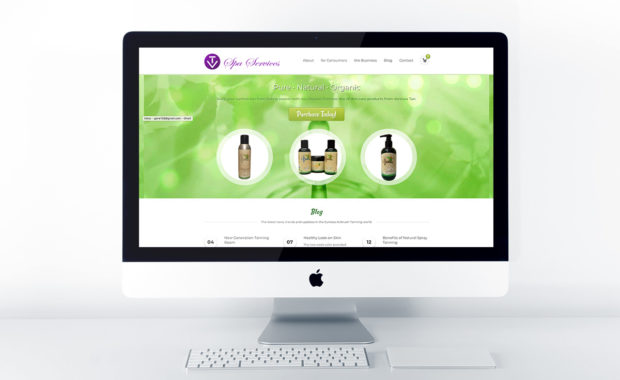 Home page design for VT Spa Services