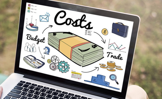 Professional Business Website Costs